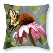 Looking Up At Swallowtail On Coneflower Throw Pillow