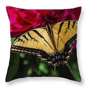 Swallowtail On Peony Throw Pillow