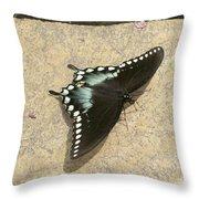 Swallowtail On The Rocks Throw Pillow
