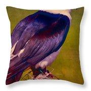 Swallowtail Pose Throw Pillow