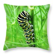 Swallowtail To Be Throw Pillow
