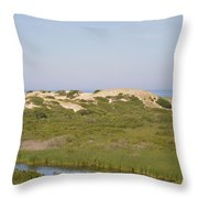 Swamp And Dunes Throw Pillow