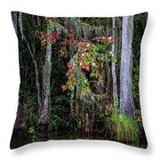 Swamp Beauty Throw Pillow
