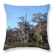 Swamp Serenity Throw Pillow