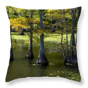 Swamp Color Throw Pillow