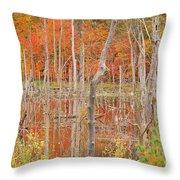 Swamp Colors Throw Pillow
