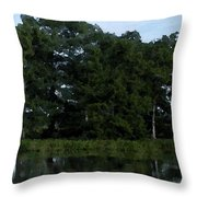 Swamp Cypress Trees Digital Oil Painting Throw Pillow