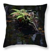 Swamp Fern Throw Pillow