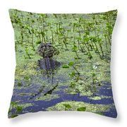 Swamp Gator Throw Pillow