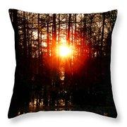 Swamp Light Throw Pillow