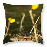 Swamp Muscian Throw Pillow