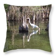 Swamp Reflections Throw Pillow
