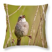 Swamp Sparrow Split Decision Throw Pillow