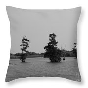 Swamp Tall Cypress Trees Black And White Throw Pillow