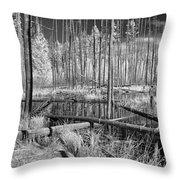 Swamp Trees Throw Pillow