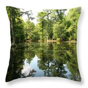 Swampland Reflection At The Plantation Throw Pillow