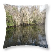 Bold Cypress Reflection Throw Pillow