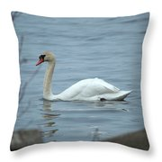 Swan A Swimming Throw Pillow