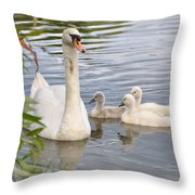 Swan And Chicks Throw Pillow