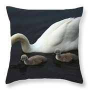 Swan And Signets Throw Pillow