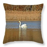Swan And Swallow Throw Pillow