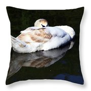 Swan Asleep Throw Pillow