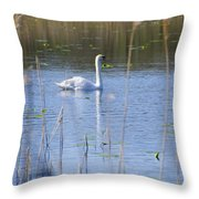 Swan At Derryallen Lough Throw Pillow