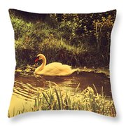 Swan At The Golden Lake Throw Pillow