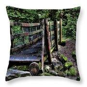 Swan Creek Footbridge Throw Pillow