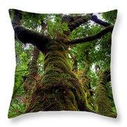 Swan Creek Tree Throw Pillow