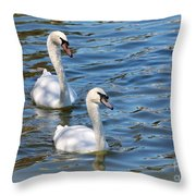 Swan Day Throw Pillow
