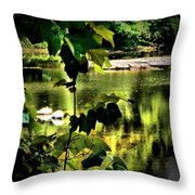 Swan Dive Throw Pillow
