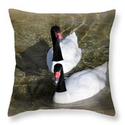 Swan Duo Throw Pillow by Marty Koch