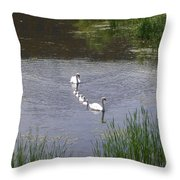 Swan Family Throw Pillow