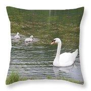 Swan Family Throw Pillow by Teresa Mucha