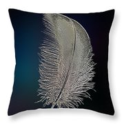 Swan Feather Throw Pillow