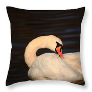 Swan Grooming Throw Pillow