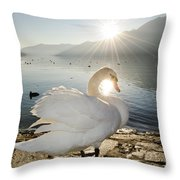 Swan In Sunset Throw Pillow