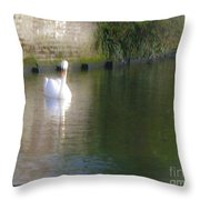 Swan In The Canal Throw Pillow