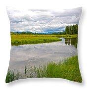 Swan Lake In Grand Teton National Park-wyoming  Throw Pillow
