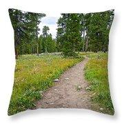 Swan Lake Trail In Grand Teton National Park-wyoming Throw Pillow