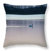 Swan On Lake At Dusk Throw Pillow