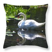 Swan On Lake Sabbatia Throw Pillow