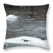 Swan On The Water Throw Pillow