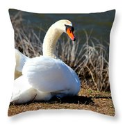 Swan Protects Her Eggs Throw Pillow