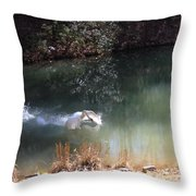 Swan Skid Throw Pillow