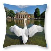 Swan Spreads Wings In Front Of State Theatre Stuttgart Germany Throw Pillow