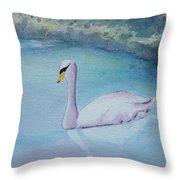 Swan Study Throw Pillow