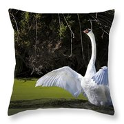 Swan Wings Spread Throw Pillow