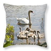 Swan With Signets 2 Throw Pillow